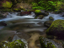 Crystal Creek Cascades Royaltyfri Foto