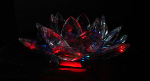 Crystal crimson lotus Royalty Free Stock Photo