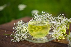 Crystal cup with green tea on table Stock Photography