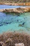 The crystal cyan water of the Blue Lagoon, Comino, Malta. The crystal cyan water and typical landscape of the Blue Lagoon, Comino Island harbor, Malta stock photo