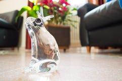 Crystal Decorating Kickknakery Frog fotos de archivo libres de regalías