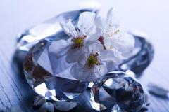 Crystal diamond Stock Image