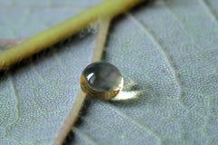 A crystal drop Stock Image