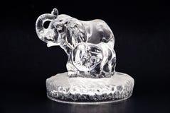 crystal elefant Royaltyfri Bild
