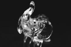 Crystal elefantstatyett Arkivfoto