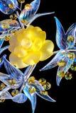 Crystal flower Stock Photos
