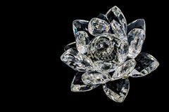 Crystal of flower Stock Image