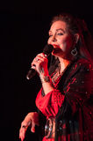 Crystal Gayle Royalty Free Stock Images