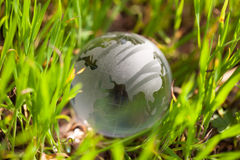 Crystal glass globe in green grass Stock Image
