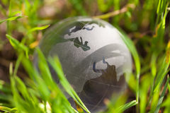 Crystal glass globe in green grass Royalty Free Stock Photo