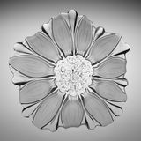 Crystal glass sunflower plate. This is a very beautiful crystal glass sunflower plates, high quality crystal glass material, coupled with superb production Royalty Free Stock Photo