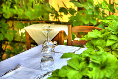 Crystal glasses are standing on a table with white table cloth. In a restaurant framed with green plants Royalty Free Stock Images