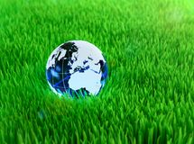Crystal globe on grass Stock Photo