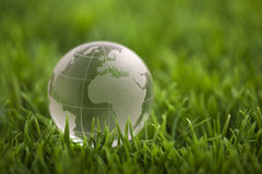 Crystal globe on green grass Stock Photography