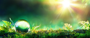 Crystal Green Globe On Moss Fotografie Stock Libere da Diritti