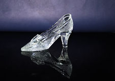 crystal häftklammermatare royaltyfri foto