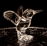 Crystal Hummingbird Stock Image