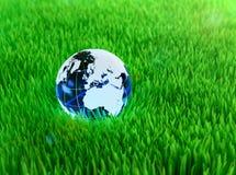 Crystal jordklot på gräs Arkivfoto