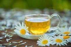 Crystal kopp med grönt te på tabellen Arkivfoto
