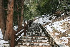 Crystal Lake Trail. Staircase through a snowy forest, Crystal Lake, California Stock Photos