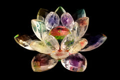 Crystal lotus Stock Images