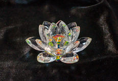 Crystal lotus on the black velvet Stock Images