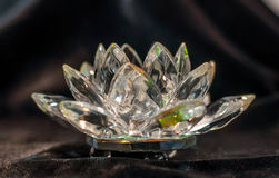 Crystal lotus on the black velvet Stock Image