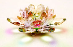 Crystal lotus flower. Decorative crystal lotus flower with reflection on the ground Stock Image