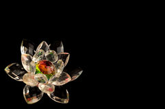 Crystal lotus frame. Decorative crystal lotus flower over black background Royalty Free Stock Images
