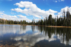 Crystal Mountail Lake Reflection. Beautiful mountain lake reflecting the forest and autumn skies Royalty Free Stock Photography
