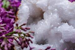 Crystal Quartz Geode claro com o centro druzy cristalino cercado pela flor lil?s roxa imagem de stock royalty free