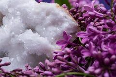 Crystal Quartz Geode claro com o centro druzy cristalino cercado pela flor lil?s roxa fotos de stock royalty free