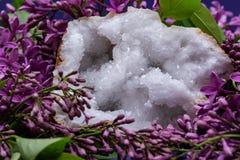 Crystal Quartz Geode claro com o centro druzy cristalino cercado pela flor lil?s roxa fotografia de stock royalty free
