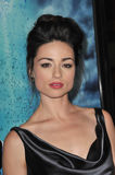 Crystal Reed Royalty Free Stock Images