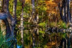Crystal Reflections av nedgånglövverk på Garner State Park, Texas Arkivbilder