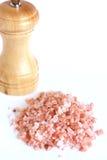Crystal Salt de l'Himalaya Images stock