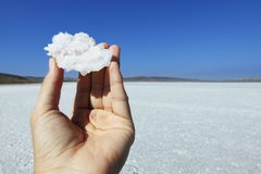 Crystal of salt in hand. On background of salt lake Stock Photo