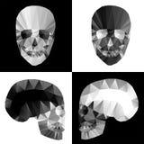 Crystal skallar på svartvita bakgrunder Arkivfoto