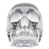 Crystal skull Stock Photo