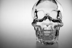 Crystal Skull lizenzfreie stockfotografie