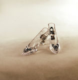 Crystal Slipper Stock Image
