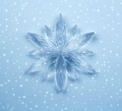 Crystal snowflake Royalty Free Stock Photos