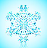 Crystal snowflake. Vector illustration of detailed  crystal snowflake Royalty Free Stock Images