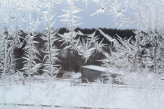 Crystal Snowflakes på fönster 9 Arkivbild