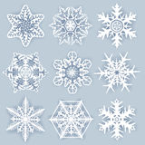 Crystal snowflakes - vector set for designers. Crystal snowflakes - 2d vector set for designers Stock Image