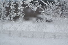 Crystal Snowflakes on Window 10 Royalty Free Stock Image