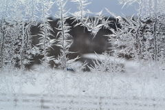 Crystal Snowflakes on Window 6 Royalty Free Stock Photo