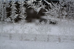 Crystal Snowflakes on Window 17 Stock Photography
