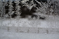 Crystal Snowflakes on Window 18 Royalty Free Stock Photo