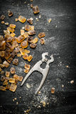 Crystal sugar with wire cutters. Royalty Free Stock Photo